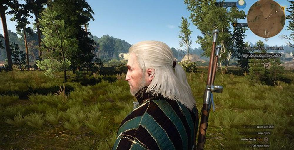 witcher_hairworks.jpg